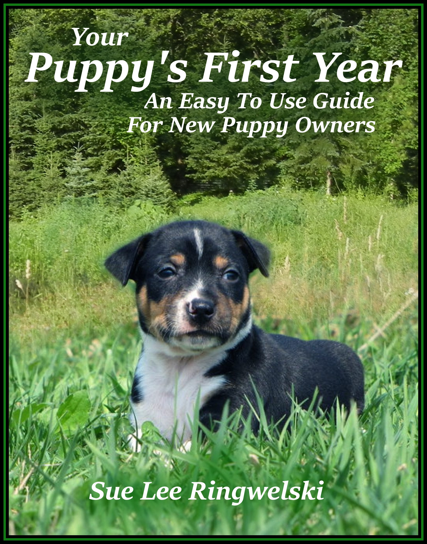 Your Puppy's First Year, a book by Sue Lee Ringwelski